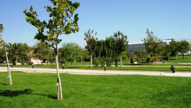 Photo of Έργα πρασίνου σε Καλαμαριά, Σταυρούπολη και Συκιές
