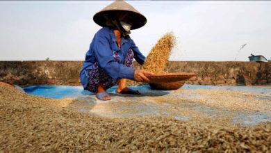 Photo of Βιετνάμ: 95 εκατ. κάτοικοι – Κανένας θάνατος από κοροναϊό