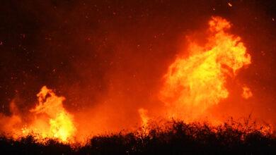 Photo of ΓΓΠΠ : Υψηλός ο κίνδυνος πυρκαγιάς σήμερα σε αρκετές περιοχές της χώρας